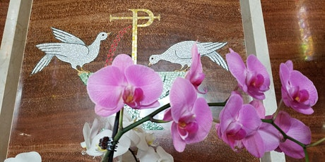 5:00PM St. Catherine Laboure Mass(es) - Saturday tickets