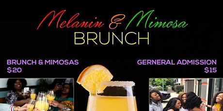 Melanin and Mimosa Brunch Mixer tickets