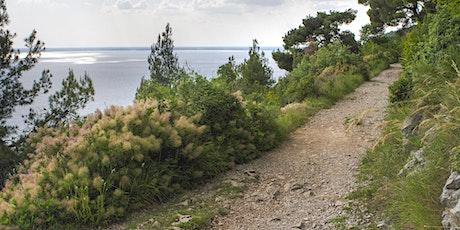 Trieste adventure - Tour delle trincee in e-bike biglietti