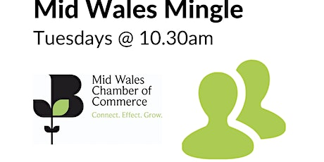 Mid Wales Mingle - Virtual Networking Meeting tickets