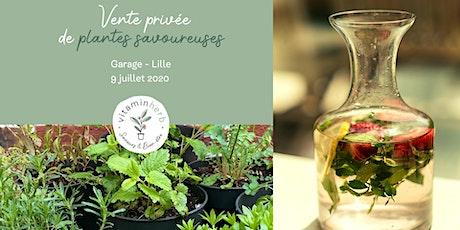 Vente privée de plantes aromatiques originales billets