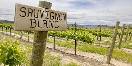 WINE CLASS: Sauvignon Blanc is more than you think tickets