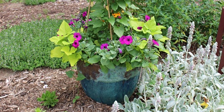 Container Gardening - Arboretum Adult Education tickets