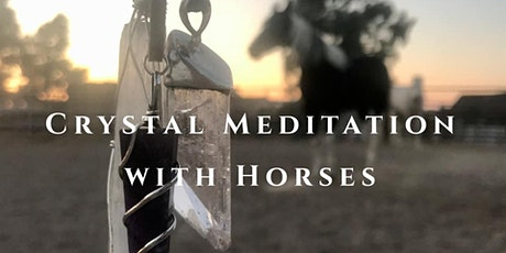 Crystal Meditation with Horses tickets