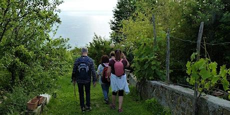 In Cammino - Il paesaggio di pietra e mare biglietti
