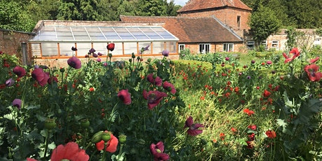 The Garden – a Poetic Space: A day to experience poetry in The Abbey garden tickets