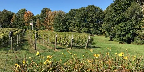 Unwined: Yoga at the Vineyard tickets