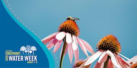 Pollinator and Rain Garden Design tickets