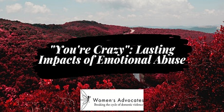 """""""You're Crazy"""": Lasting Impacts of Emotional Abuse tickets"""