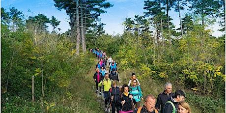In Cammino - Per il Carso col Nordic Walking: Monte San Leonardo biglietti