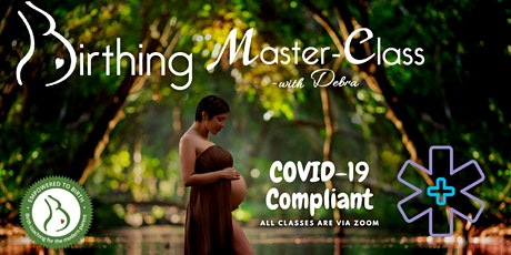 Birthing Master-Class ~ July 7, 14, 21 & 28 6:30 to 8;30pm tickets