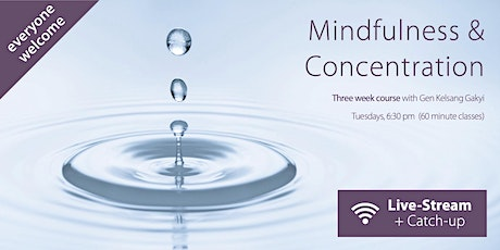 Mindfulness & Concentration tickets
