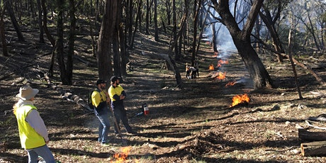 Cultural Burning Workshop, Birkenburn Farm, Bungendore tickets