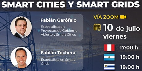SMART CITIES y SMART GRIDS entradas