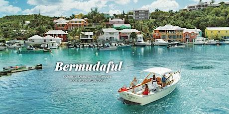 Bermuda Webinar - We are open NOW tickets