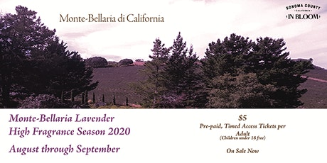 Monte-Bellaria Lavender High Fragrance Season 2020 tickets