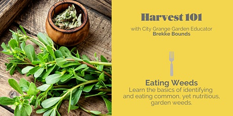 Eating Weeds! - ONLINE Class tickets