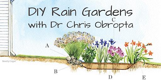 DIY Rain Gardens