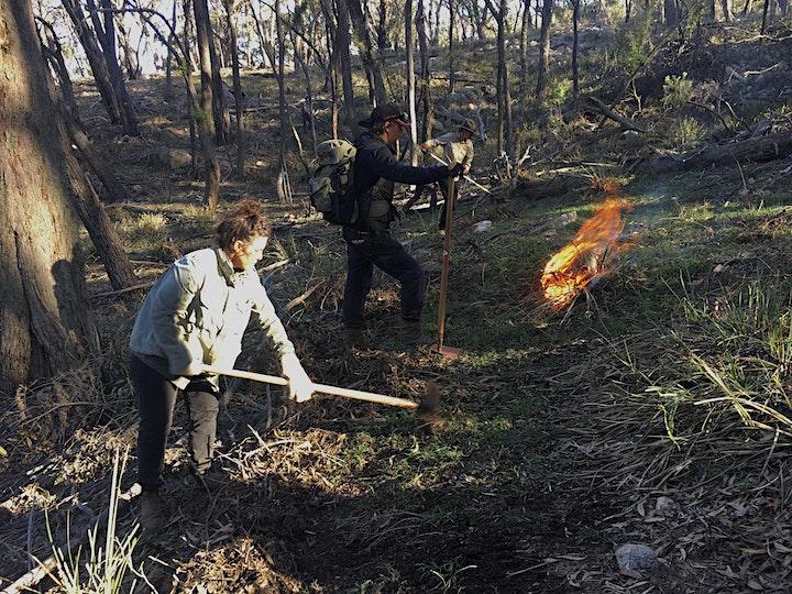 Cultural Burning Workshop, Birkenburn Farm, Bungendore image