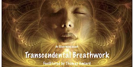 Transcendental Breathwork facilitated by Thomas Amiard tickets