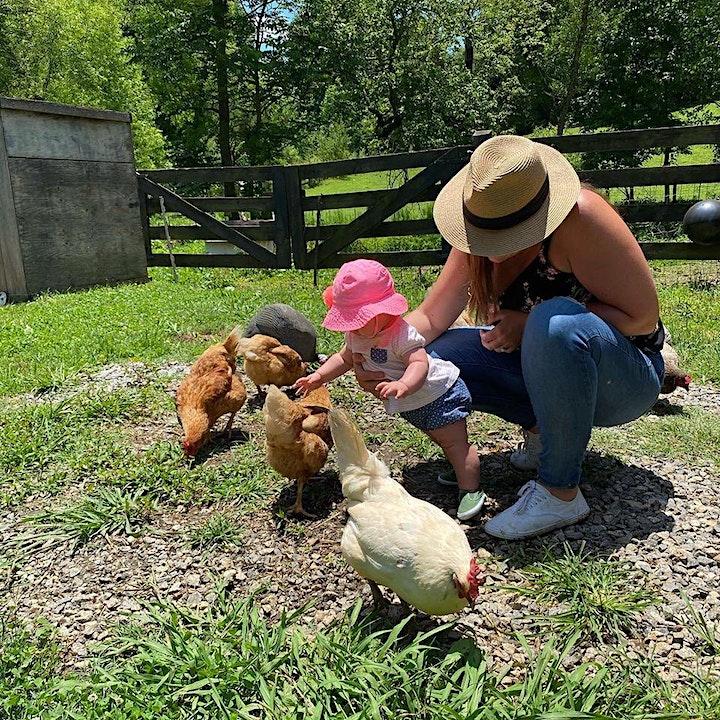 Private Farm Tour image