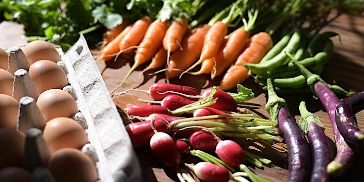 Feedback Organic Family Open Day image