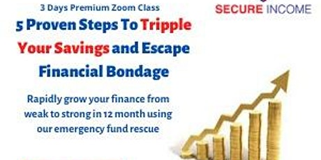 The Emergency Fund Rescue 2.0 - Virtual Training and 30 Days Coaching. tickets