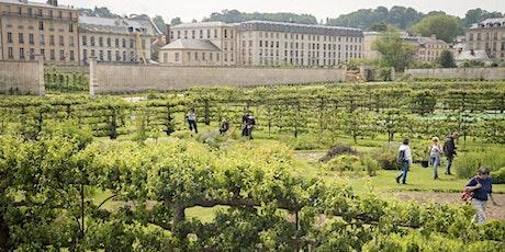 Visite de Versailles hors des sentiers battus billets