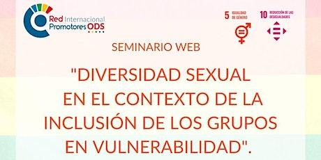 Diversidad sexual en el contexto de inclusión de los grupos vulnerables entradas