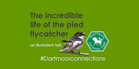 Dartmoor Connections- The incredible life of the pied flycatcher tickets