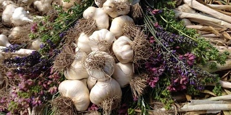 Adults Only Garlic Harvest Walk tickets
