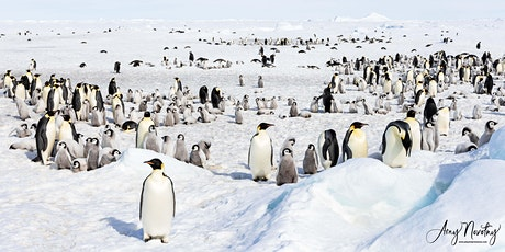 The Impact of a Journey: Antarctica and the Emperors tickets