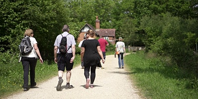 NETWALKING NEW FOREST - Improve your health while