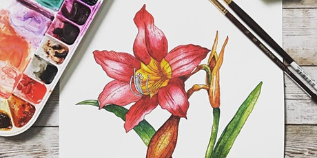 Paint a Realistic Amaryllis in Pen & Ink and Watercolor Live Online Class tickets