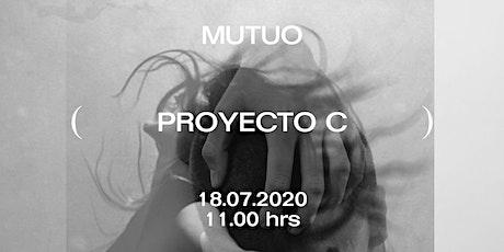 Proyecto C entradas