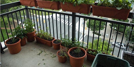 Learn the 3 Secrets to Gardening on a Balcony tickets