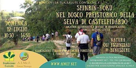 Shinrin-Yoku nella Selva di Castelfidardo con A.I.Me.F. biglietti