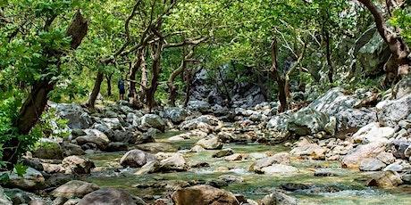 Ποταμοδιάσχιση στο Φαράγγι Στροπώνων & Παραλία Χιλιαδού, Εύβοια tickets