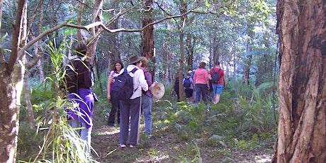 Annual Bonnet Bay Wildflower Walk tickets