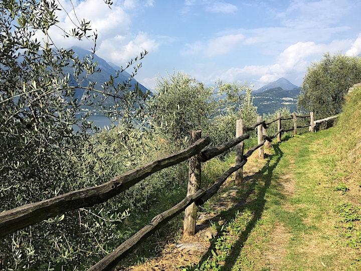 Immagine TREKKING & BUSINESS NETWORKING - Il Sentiero del Viandante: Bellano/Varenna