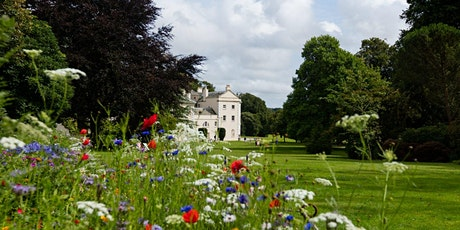 Timed entry to Saltram (13 July - 19 July) tickets