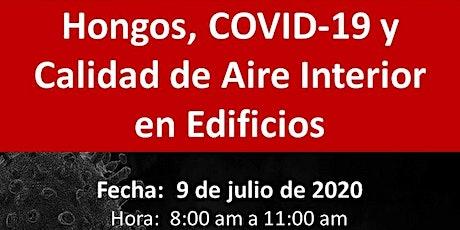 Hongos, COVID-19 y Calidad de Aire Interior en Edificios entradas