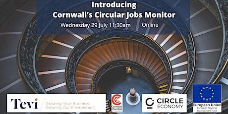 Introducing Cornwall's Circular Jobs Monitor tickets