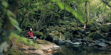 七月森林浴: 大埔滘之旅 tickets