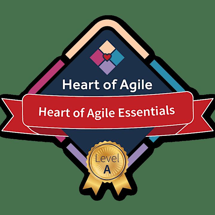 Heart of Agile Essentials - Online image