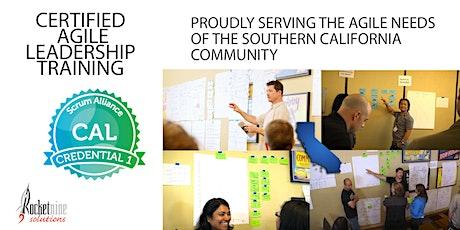 Scott Dunn|Nashville-Online|Agile Leadership Training |CAL I| August2020 tickets