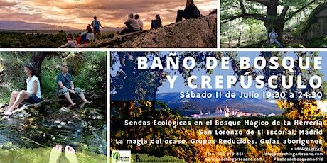 Baño de Bosque sábado 11 Jul - Crepusculo Bosque La Herrería El Escorial entradas
