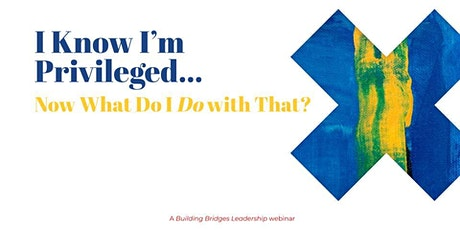 I Know I'm Privileged... Now What Do I Do with That? (Webinar) tickets