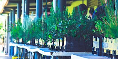 Seed propagation workshop tickets