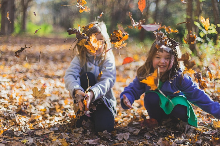 PapaZeit - gemeinsam mit Papa in die Natur: Bild